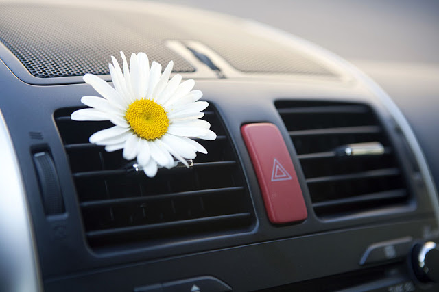 Tác dụng của nước hoa ô tô
